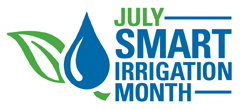 irrigação com eficiencia
